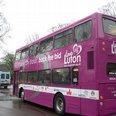 Luton City Bid