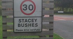 Stacey Bushes Incident