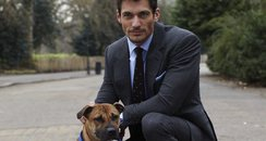 David Gandy At Battersea Dogs Home