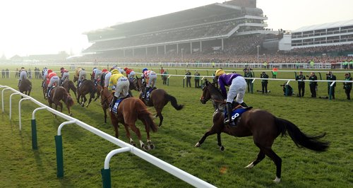 Hope the Cheltenham trials are rubbish :)