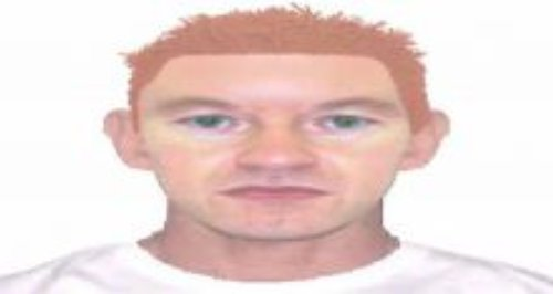efit released by Wiltshire Police investigating se