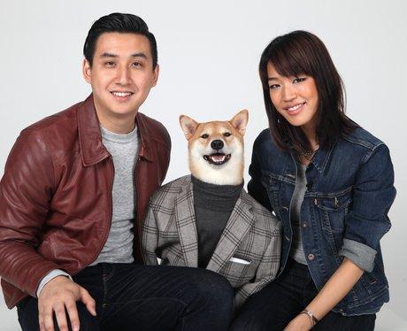 Bodhi The designer menswear fashion Dog!