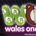 Wales Onesie Walk