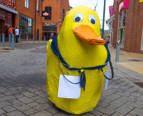 Norwich Duck Race 2015