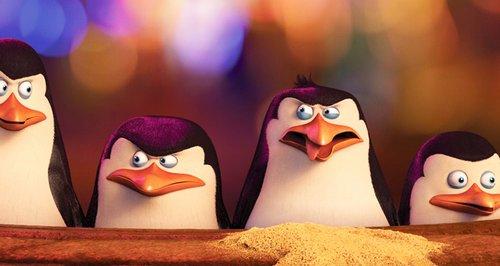 sky, penguins