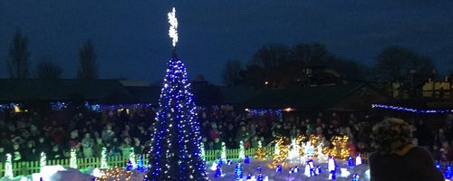Drusillas Christmas Light Switch-On!