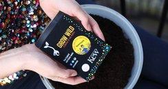 Kew Gardens Grow Wild seeds Get ready to grow wild