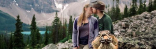 Romantic shoot photobombed by squirrel