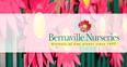 Bernaville Nurseries