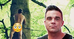 Robbie Williams naked album cover  asset